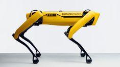 Got $74,500? You Can Buy Boston Dynamics' Robot Dog Nintendo Switch, Robotics Companies, Boston Dynamics, Mobile Robot, New Boston, Work Site, Windows Software, Oil Rig, Dogs For Sale
