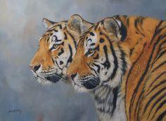 Tigers by David Stribbling