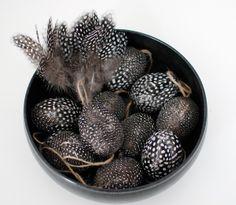 guinea fowl feathered eggs in black bowl    Almbacken: Sugen på mitt nya påskpynt