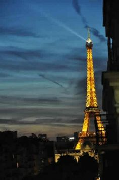 Luxury one bedroom apartment in Paris, with view on the Eiffel Tower - Avenue de Saxe 75007 Paris