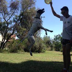 JUMP TIAGO