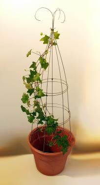 Make your own Topiary Frame