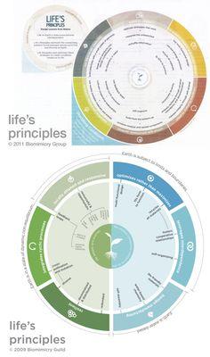 Top: Life's Principles version 2011 and Bottom: Life's Principles version 2009. Diagrams: Biomimicry Guild/Group