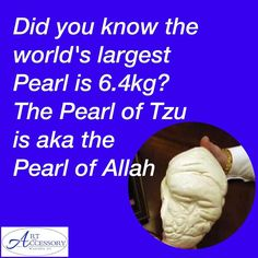 "This magnificent pearl is the largest pearl in the world.  It was found in the Philippines and was named the ""Pearl of Allah"" because it's surface has the image of a turbaned man.  Unfortunately it is not a gem-quality pearl but is known as a clam pearl. It measures 24cm (9.45 inches) in diameter and weighs 6.4kg (14.1 lb) In 1982 Gemologist Michael Steenrod in Colorado Springs valued the pearl at $60M and $93M in 2007"
