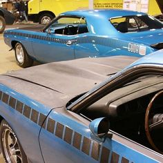 from @mopar.legends -  Here's some great shots of this Stunning concourse level AAR Cuda owned by @phantasmcuda  Sitting next to an actual #Barnfind at the #MCACN2017 Photo credit@phantasmcuda shared by @ninjamountainman  #70AARCuda  #PlymouthCuda #Plymouth  #pin #twitter - #regrann