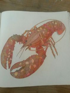 The 98 Best Coloring Lobster Images On Pinterest