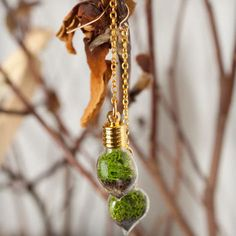 Terrarium Heart Earrings - Gold