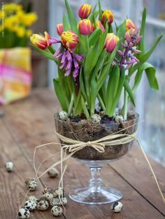 Hyacinths and tulips.now THAT says spring! Ikebana, Love Flowers, Spring Flowers, Beautiful Flowers, Bulb Flowers, Spring Blooms, Deco Floral, Arte Floral, Spring Flower Arrangements