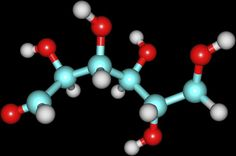 Does Fat Convert to Glucose in the Body?