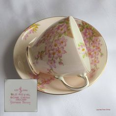 Vintage Old Royal 3106 GLORIOUS DEVON Bone China Tea Cup and Saucer - Made in England