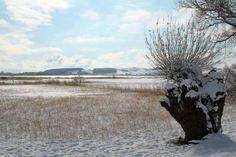 Winterliche Malreise auf Rügen | Blick über den winterlichen Bodden bei Middelhagen(c) Jost Grünheid (1)  #Winter #Schnee #Mecklenburg-Vorpommern #Rügen