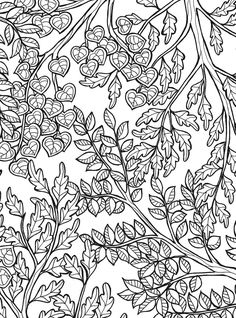 Keep Calm and Color : Tranquil Trees Coloring Book @ Dover Publications Leaf Coloring, Colouring Pages, Coloring Sheets, Coloring Books, Free Adult Coloring, Printable Adult Coloring Pages, Dover Publications, Pen And Watercolor, Tampons