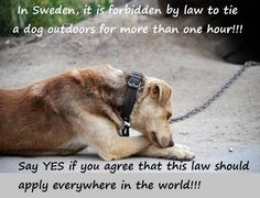 All countries should do this...