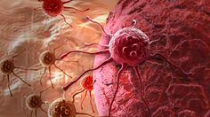 Efektivní lék na rakovinu štítné žlázy