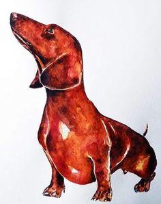 """Ed's Watercolours """"Red Dachshund"""" #dachshund"""