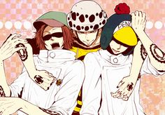 Shachi, Penguin and Trafalgar Law #one piece