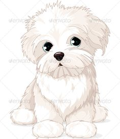 Illustration of Clipart Maltese Puppy Dog vector art, clipart and stock vectors. Animal Drawings, Cute Drawings, Dog Drawings, Cute Puppies, Dogs And Puppies, Animals And Pets, Cute Animals, Puppy Drawing, Dog Vector