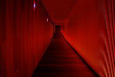 Alone, Asuka Langley Soryu, Bottom Of The Ocean, Vanishing Point, Heaven And Hell, Bioshock, Neon Lighting, Stairs, Lights