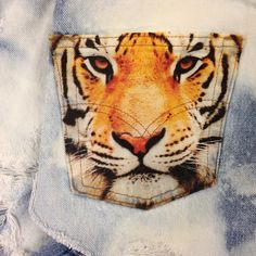"""""""The eyes of a tiger"""" #tigre"""