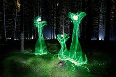 Hannu Huhtamo travaille dans l'Obscurité pour créer de la Lumière (2)