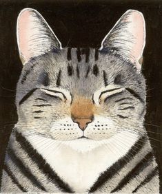 Nonchalant — artemisdreaming: Cat Nap Kay Mc Donagh HERE Gatos Cats, Photo Chat, Cat Drawing, Crazy Cats, Cat Art, Cats And Kittens, Ragdoll Kittens, Funny Kittens, Bengal Cats