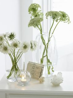 white flowers, glass vases