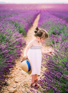 Little Girl in Lavender - The fresh, sweet aroma of lavender -- whether in the…