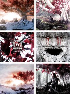 The children of the forest are said to have carved faces in the weirwoods during the Dawn Age, before the coming of the First Men across the narrow sea. It is said that through the faces the old gods watch over the followers and bear witness to important events. #asoiaf