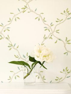 Colefax and Flower 1001392