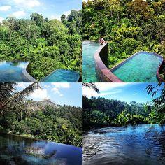 Ubud Hanging Garden Hotel | Bali