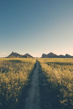 oneyear47nationalparks: Castle Trail, Badlands National Park Photo: Scott Cochran