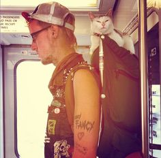 muni punk rock cat