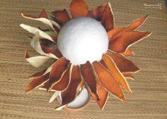 topiario cáscaras de naranja 2