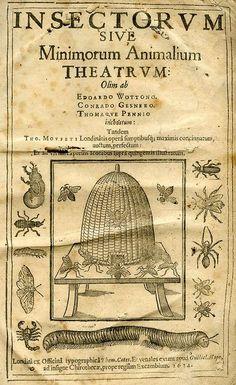 insectorum sive minimorum animalium theatrum, 1634