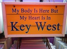 Your guide to Key West hotels, activities and restaurants. When traveling on the Key West Express, we want you to experience everything Key West has to offer. Key West Camping, Florida Keys Camping, Key West Hotels, Key West Vacations, Key West Decor, Zion Camping, Key West Style, Key West Florida, Florida Living