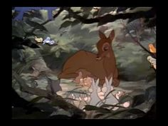 Screencap Gallery for Bambi Bluray, Disney Classics). The animated story of Bambi, a young deer hailed as the 'Prince of the Forest' at his birth. As Bambi grows, he makes friends with the other animals of Bambi Disney, Walt Disney, Bambi Film, Bambi 1942, Disney Animated Movies, Young Prince, Disney Animation, The Voice, Deer