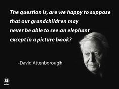 ~ David Attenborough- 'I can relax knowing there are awesome people like Dave in the world showing us amazing things and creating awareness'.
