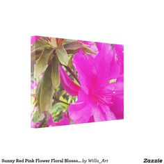 Sunny Red Pink Flower Floral Blossom Print Canvas - Turn memories into a work of…