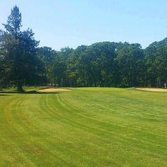 Freshly mowed. Oakbrook Golf Club, Lakewood, WA.