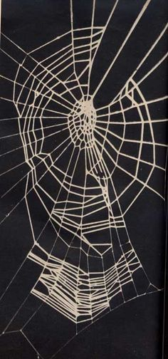 Web of Spider on Pervitin ( methamphetamine ) Spider Pictures, Methamphetamine, Spiders, Drugs, Addiction, Weird, Facts, Strands, Darkness
