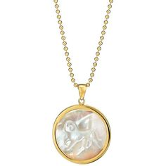 Women's Asha Zodiac Mother-Of-Pearl Pendant Necklace ($295) ❤ liked on Polyvore featuring jewelry, necklaces, aquarius, 14 karat gold necklace, long necklace, 14k pendant, long pendant necklaces and mother of pearl pendant necklace