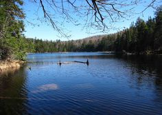 William Blake Pond in the Adirondack Mountains of NY