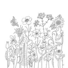 Items similar to World of Flowers: A Coloring Book & Floral Adventure (Korean Version) by Johanna Basford on Etsy Garden Coloring Pages, Secret Garden Colouring, Cute Coloring Pages, Coloring Books, Flower Garden Drawing, Johanna Basford Secret Garden, Outline Drawings, Pencil Drawings, Drawing Templates