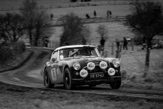 Loops Spa 2014 by Guillaume Tassart on Flickr. Austin Healey, Rally Car, Vintage Racing, Race Day, Spa, Classic Cars, Formula 1, Wheels, Board