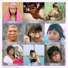 Hay 106 tribus hermosas en Colombia