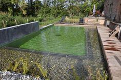Une piscine écologique rénovée