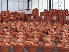 Behind the scenes at the Anne Geddes factory... ;)