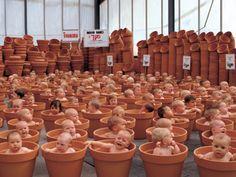 123 Pots