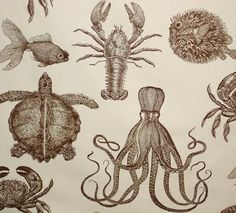 ocean fabric | all its wonderful sea creatures. You'll find this ocean and sea fabric ...