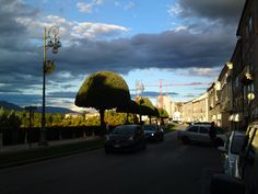 Viale dei Martiri @ Bassano del Grappa (Vicenza) Italy